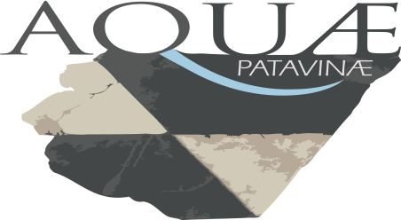 Progetto Aquae Patavinae