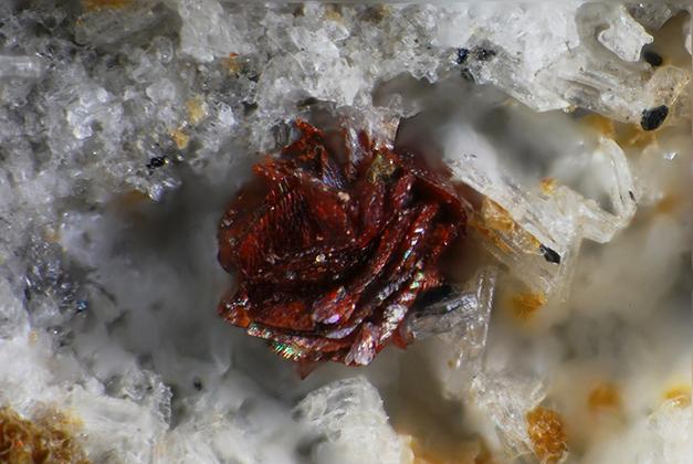 Geometrie e Colori della Natura, i Minerali della Trachite di Zovon