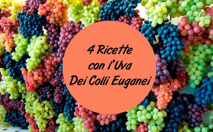 4 Ricette con l'Uva dei Colli Euganei