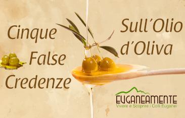 Cinque False Credenze sull'Olio d'Oliva
