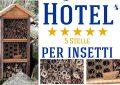 Hotel 5 Stelle per Insetti