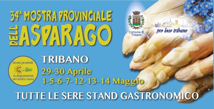 Mostra Provinciale dell'Asparago di Tribano