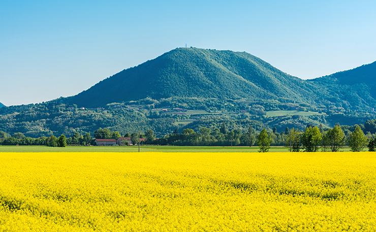 Il Monte Grande