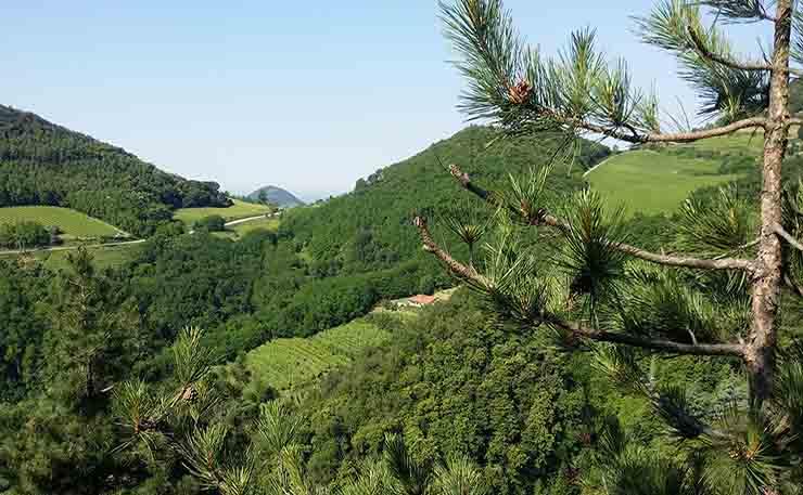 Alla scoperta della Priara del Monte Orsara