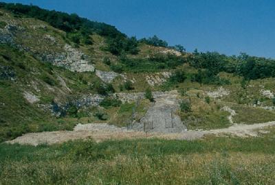 Il Giacimento Fossilifero di Cava Bomba a Cinto Euganeo