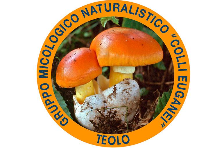 Gruppo Micologico Naturalistico Teolo