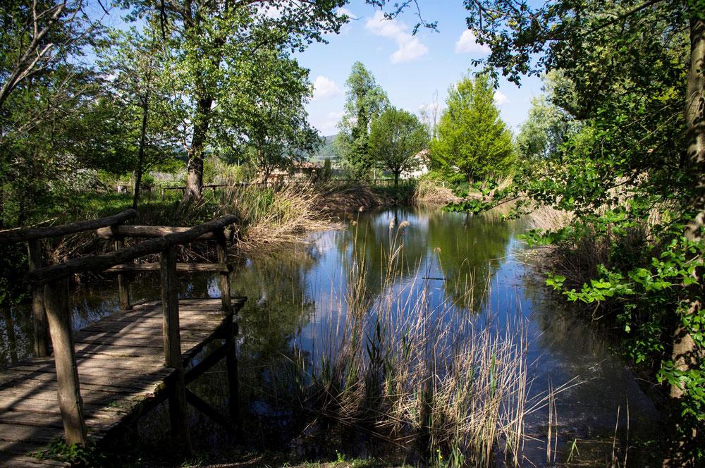 Sentiero n 7 monte calbarina colli euganei for Piani cottage piccolo lago