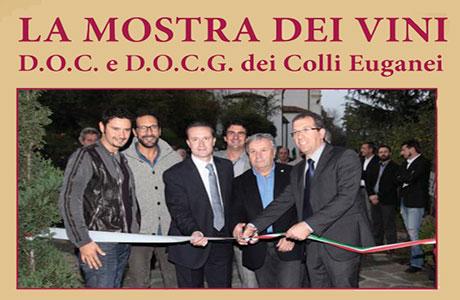 La Mostra dei Vini DOC e DOCG dei Colli Euganei