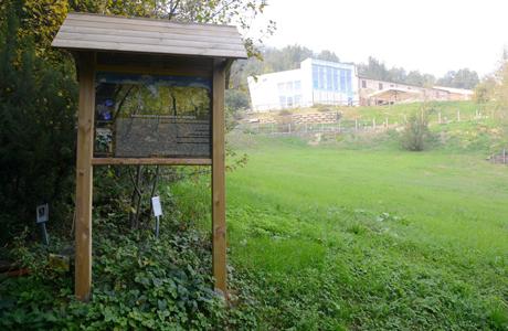 Giardino Botanico Casa Marina dei Colli Euganei