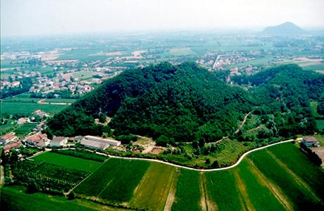 Monte Merlo, Tesori Naturalistici e Culturali