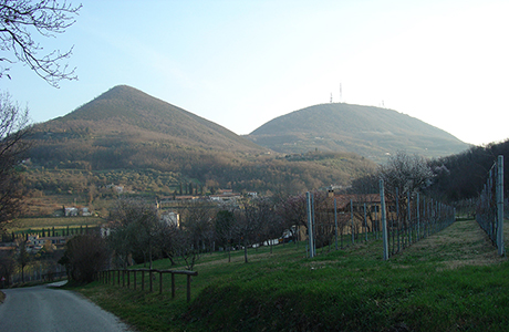 Geologia del complesso Monte Venda e Monte Vendevolo