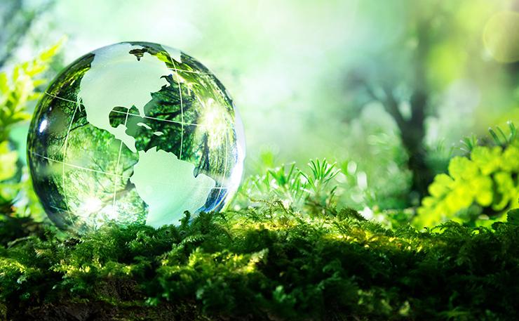 Biodiversità, una Ricchezza Inestimabile da Tutelare