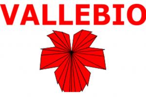 Cantina Vallebio