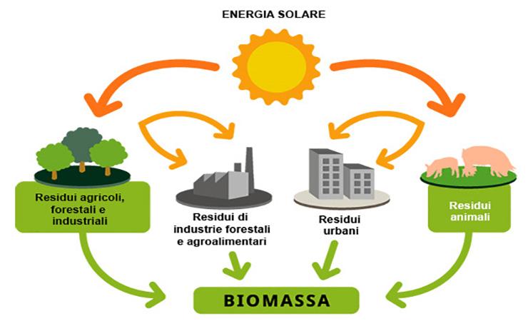 Le Biomasse Energetiche energia pulita ed ecologica